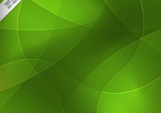 Free vector Green circles background #1722