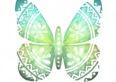 Free vector Hand painted butterfly #577