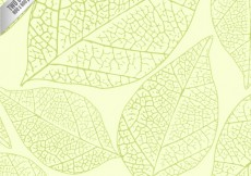 Free vector Sketchy green leaves background #1003