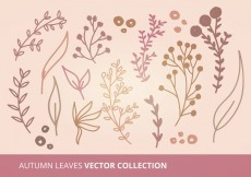 Free vector Autumn Leaves Vector Collection #10515
