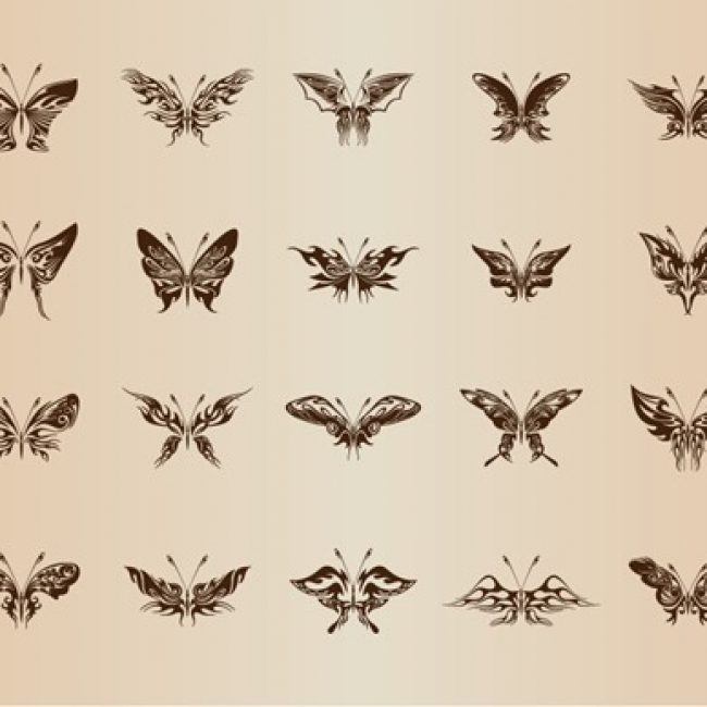 Free vector Butterflies for Design Vector Set #5253