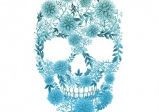 Free vector Floral skull in watercolor style #6950