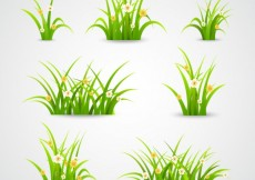 Free vector Green grass collection #5101