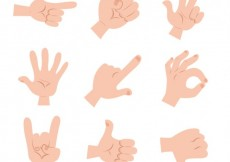 Free vector Illustrated hand gestures #9442