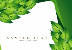 Free vector Template with leaves #10129