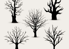 Free vector Tree silhouettes without leaves  #9912
