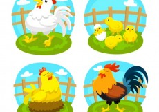 Free vector Variety of poultry #5625