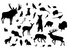 Free vector Forest Animal Silhouettes #5335