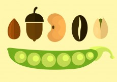 Free vector Vector Icons Of Seeds #11790