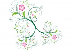 Free vector Vector Swirls and Floral Swirls #9781