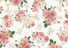 Free vector Vintage Pink And White Roses Vector Background #4324
