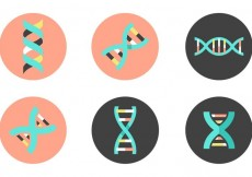 Free vector Dna Double Helix Vector Icons #19639