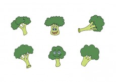 Free vector Free Broccoli Isolated Vector Series #15317