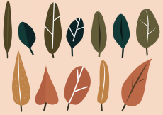 Free vector Free Leaf Vector #14832
