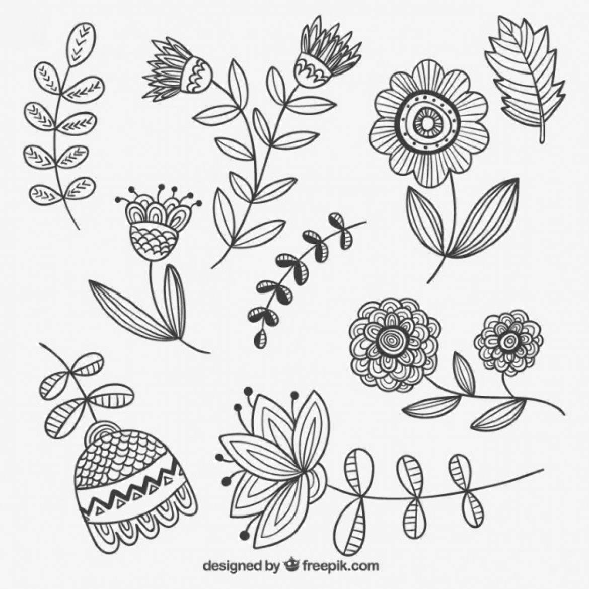 Line Drawing Flower Vector : Free vector hand drawn flowers my graphic hunt