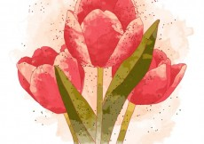 Free vector hand painted tulips #15733