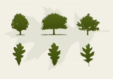 Free vector Oak Trees And Leaves Vector Silhouettes #14105