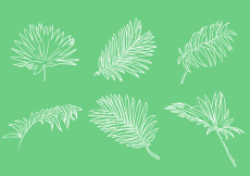 Free vector Scribble Palm Leaf Vector Set #14382