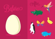 Free vector Vector Illustration of Different Oviparous Animals #13629