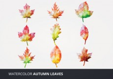 Free vector Watercolor Vector Leaves #16486