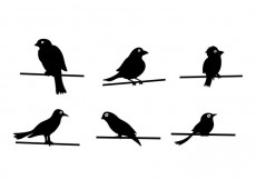 Free vector Bird On Wire Vector #24403