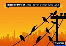 Free vector Birds At Sunset Free Vector Background Vol 2 #24317