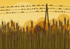 Free vector Birds on Wires in Autumn #24497