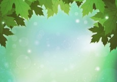 Free vector Bright leaves background #20852