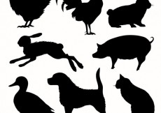 Free vector Collection of animal silhouettes #20287