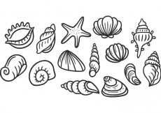 Free vector Free Pearl Shell Vectors #22514