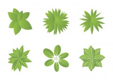 Free vector Free Plant top view Vector Illustrations #20395