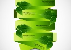 Free vector Green ribbons with leaves #24976