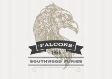 Free vector Illustrated falcon badge #21373