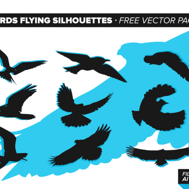 Bird flying silhouette vector