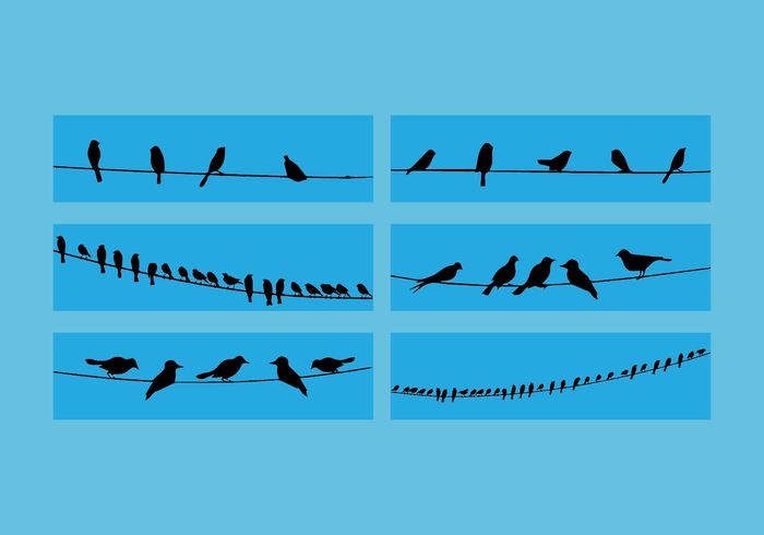 Free vector Birds On Wire Vector Set #28426 | My Graphic Hunt