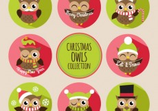 Free vector Christmas owls collection #30426