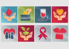 Free vector Donate Icon Vector #31352