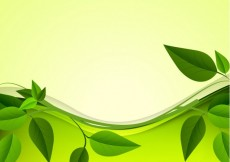 Free vector Green leaves background #29195
