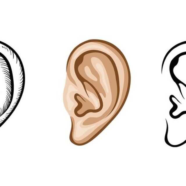 Related Keywords Amp Suggestions For Ear Vector