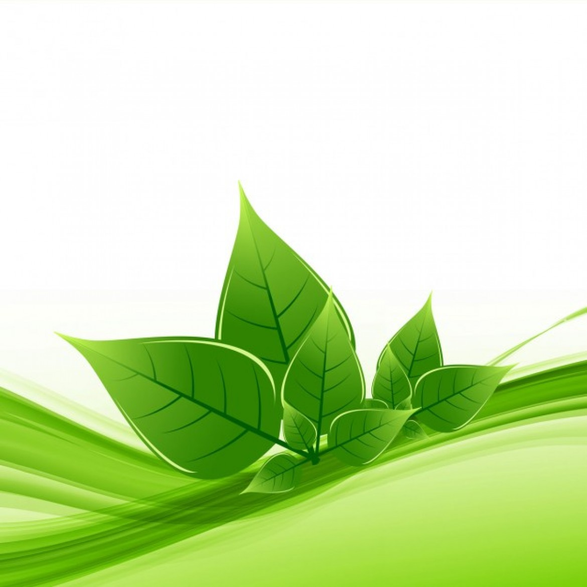 Free vector Nature leaf background #32300 | My Graphic Hunt