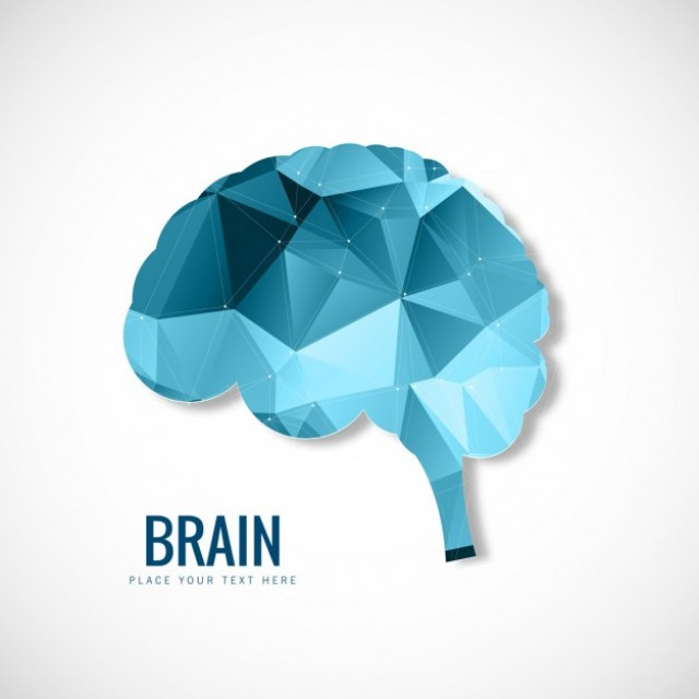 Free vector Polygonal Brain #32314