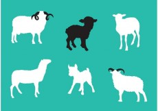 Free vector Sheep Isolated Vectors #30057