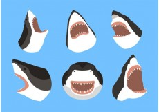 Free vector Great white shark #30225