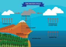 Free vector Water Cycle Diagram Vector #30682