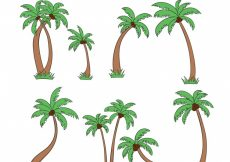 Free vector Collection of hand-drawn palm trees #436
