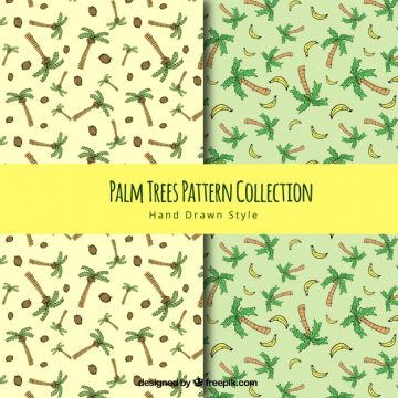 Free vector Hand drawn palm tree patterns #2177