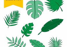 Free vector Set of hand-drawn green palm leaves #444