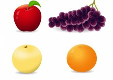 Free vector Several fruits in realistic design #886