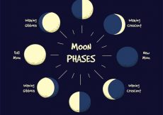 Free vector Various phases of the moon #48
