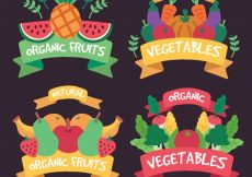 Free vector Collection of colored stickers with healthy food #8071